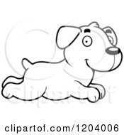 Cartoon Of A Black And White Cute Labrador Puppy Running Royalty Free Vector Clipart by Cory Thoman