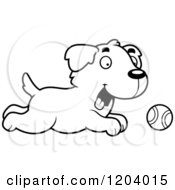 Cartoon Of A Black And White Cute Golden Retriever Puppy Chasing A Tennis Ball Royalty Free Vector Clipart