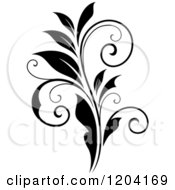 Clipart Of A Black And White Flourish Design Royalty Free Vector Illustration