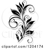 Clipart Of A Black And White Flourish With A Shadow 15 Royalty Free Vector Illustration