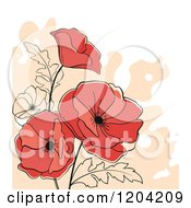 Background Of Red Poppy Flowers Over Beige And White