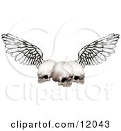 Three Human Skulls With Grunge Wings Clipart Illustration by AtStockIllustration