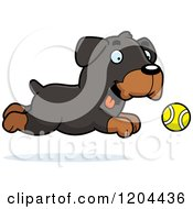 Cartoon Of A Cute Rottweiler Puppy Dog Chasing A Ball Royalty Free Vector Clipart by Cory Thoman