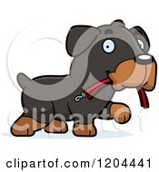 Cartoon Of A Cute Rottweiler Puppy Dog Carrying A Leash Royalty Free Vector Clipart