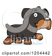 Cartoon Of A Cute Rottweiler Puppy Dog Walking Royalty Free Vector Clipart