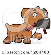 Cartoon Of A Cute Boxer Puppy Dog Carrying A Leash Royalty Free Vector Clipart
