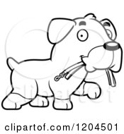 Cartoon Of A Black And White Cute Rottweiler Puppy Dog Carrying A Leash Royalty Free Vector Clipart