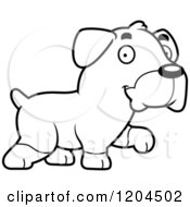 Cartoon Of A Black And White Cute Rottweiler Puppy Dog Walking Royalty Free Vector Clipart