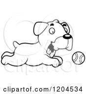 Cartoon Of A Black And White Cute Boxer Puppy Dog Chasing A Ball Royalty Free Vector Clipart