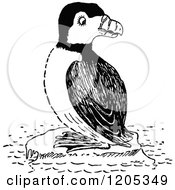 Clipart Of A Vintage Black And White Puffin Royalty Free Vector Illustration
