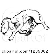 Cartoon Of A Vintage Black And White Dog Royalty Free Vector Clipart