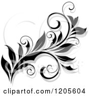 Clipart Of A Black And White Flourish With A Shadow 16 Royalty Free Vector Illustration
