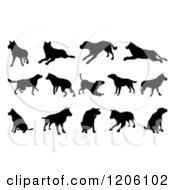 Clipart Of Black Silhouetted Dogs Jumping Walking And Playing Royalty Free Vector Illustration