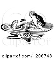 Vintage Black And White Frog And Fish