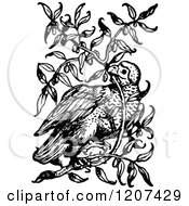 Clipart Of A Vintage Black And White Bird In A Bush Royalty Free Vector Illustration