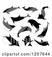 Clipart Of Black Silhouetted Dolphins Royalty Free Vector Illustration by AtStockIllustration