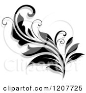 Clipart Of A Black And White Flourish With A Shadow 17 Royalty Free Vector Illustration