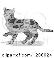 Cartoon Of A Cute Bengal Cat Royalty Free Vector Clipart