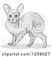 Cartoon Of A Cute Sphynx Cat Royalty Free Vector Clipart by BNP Design Studio