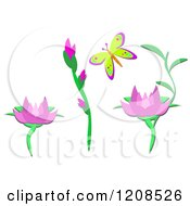 Butterfly Heliconia And Lotus Flowers