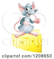 Cartoon Of A Happy Gray Mouse Holding A Thumb Up On A Block Of Cheese Royalty Free Vector Clipart by AtStockIllustration