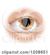 Cartoon Of A Human Eye Royalty Free Vector Clipart