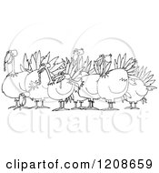 Outlined Flock Of Turkeys