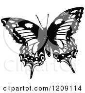 Vintage Black And White Butterfly