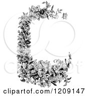 Clipart Of A Vintage Black And White Morning Glory Plant Border Royalty Free Vector Illustration