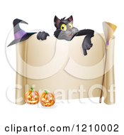 Black Cat Over A Scroll Sign With A Witch Hat Broomstick And Halloween Pumpkins
