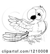 Cartoon Of A Black And White Presenting Macaw Parrot Royalty Free Vector Clipart