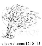 Sketched Black And White Tree Being Stripped Of Autumn Leaves In A Breeze