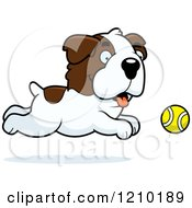 Cartoon Of A St Bernard Dog Chasing A Tennis Ball Royalty Free Vector Clipart
