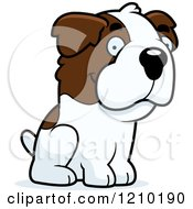 Cartoon Of A Sitting St Bernard Dog Royalty Free Vector Clipart