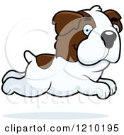 Cartoon Of A Running St Bernard Dog Royalty Free Vector Clipart