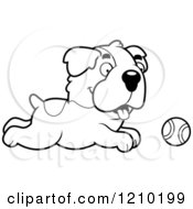 Cartoon Of A Black And White St Bernard Dog Chasing A Tennis Ball Royalty Free Vector Clipart by Cory Thoman
