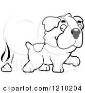 Black And White St Bernard Dog Pooping