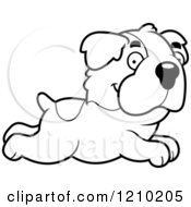Cartoon Of A Black And White Running St Bernard Dog Royalty Free Vector Clipart