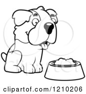 Black And White St Bernard Dog Sitting Over A Food Bowl