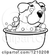 Cartoon Of A Black And White St Bernard Dog Taking A Bath Royalty Free Vector Clipart