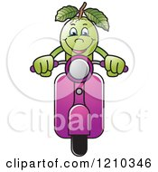 Clipart Of A Guava Mascot On A Scooter Royalty Free Vector Illustration