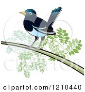 Clipart Of A Perched Magpie Bird Royalty Free Vector Illustration