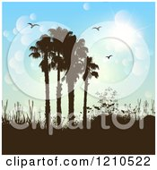 Brown Silhouetted Hills And Palm Trees With Birds Against A Flare Sky