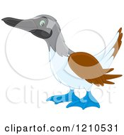 Cartoon Of A Blue Footed Boobie Bird Royalty Free Vector Clipart by Alex Bannykh
