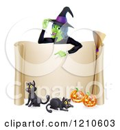 Cartoon Of A Witch Pointing Down To A Scroll Sign With Black Cats Halloween Pumpkins And A Broomstick Royalty Free Vector Clipart