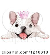 Cartoon Of A Spoiled White Bulldog With A Princess Crown Royalty Free Vector Clipart