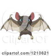 Cute Flying Bat With Blue Eyes