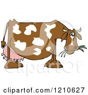 Cartoon Of A Profiled Dairy Cow Eating Grass Royalty Free Vector Clipart