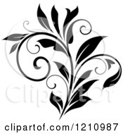 Clipart Of A Black And White Flourish Design 10 Royalty Free Vector Illustration