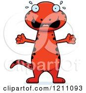 Scared Slim Red Salamander
